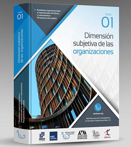 Dimensión Subjetiva de las organizaciones