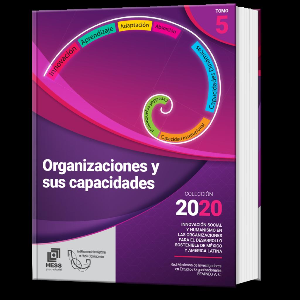 Organizaciones y sus capacidades